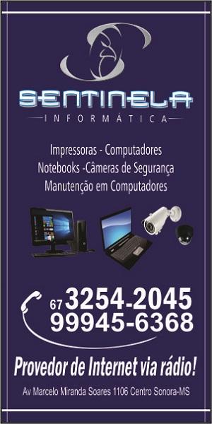 SENTINELA 300X600