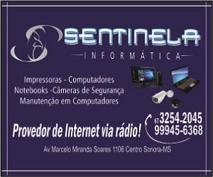 SENTINELA 300X250