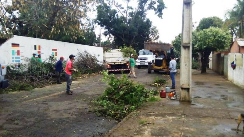TRÊS LAGOAS  Vendaval derruba árvores e causa danos materiais em bairros