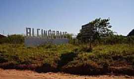 ALCINOPOLIS